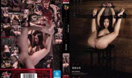 Iron Crimson 4 Miyu Kotohara [DASD-300]