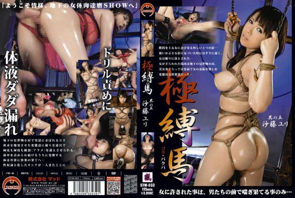 Yuri Fuji Sha five horse very Bak [STM-033]
