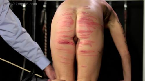 Life in the Elite Pain Club Part 18 (10.11.2015/Spanking/HD)