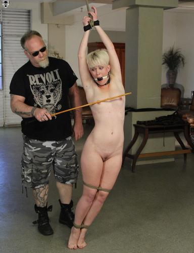 Sasha Knox – Insatiable Submission  (2015/SocietySM.com/DungeonCorp.com/HD/720p)