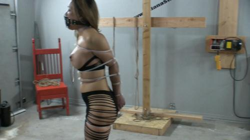 Zip Tied Live Part 1 – Breaking in the New Muzzle Gag (21.01.2016/Asianastarr.com/FullHD/1080p)