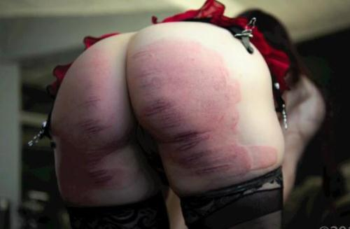 Bliss Paddled Purple & Caned for Disobedience – Hard Spanked! (21.01.2016/Spanking/SD/540p)